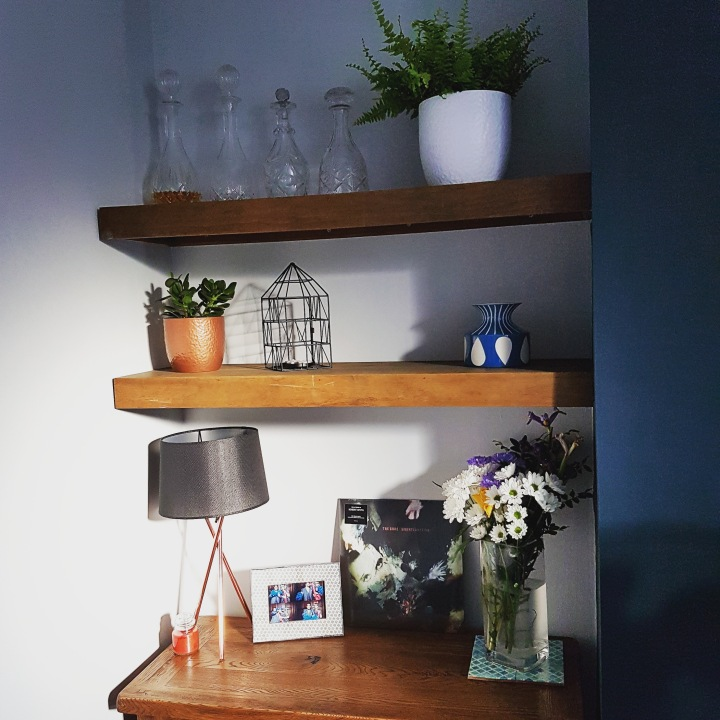 shelves with plants and ornaments